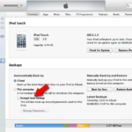 [SOLVED] Enter the Password to Unlock your iPhone Backup