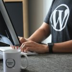 Traits of the Best Custom WordPress Development Agencies in 2021