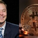 3 Things Elon Musk Can Teach Us About Cryptocurrency.